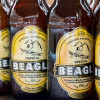 Ricardo Ferreyra: Brewing Beagle Beer at the End of the World