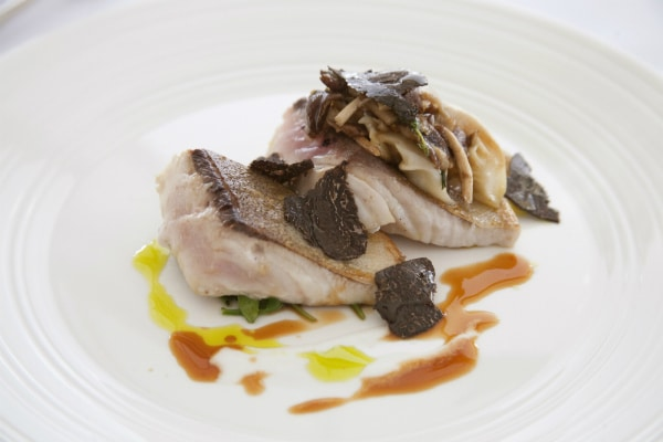 Kingfish with truffle