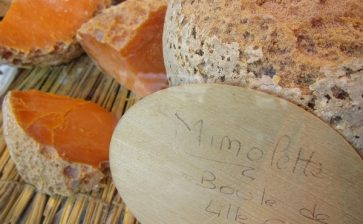 USA Says 'non' to French Mimolette Cheese