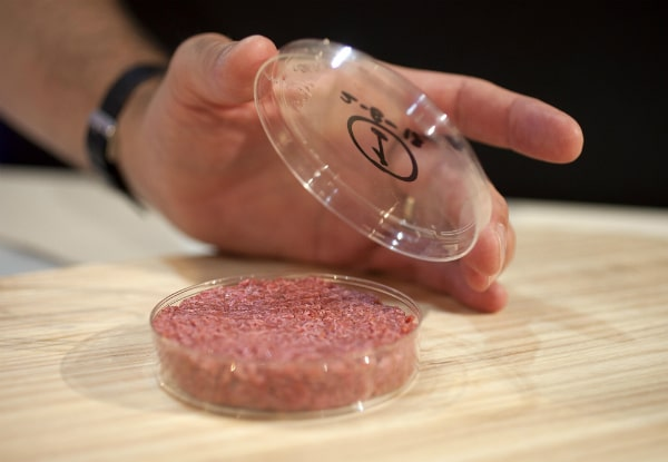 Cultured Beef