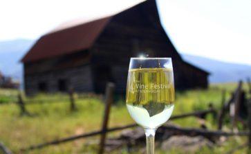 Steamboat Wine Festival