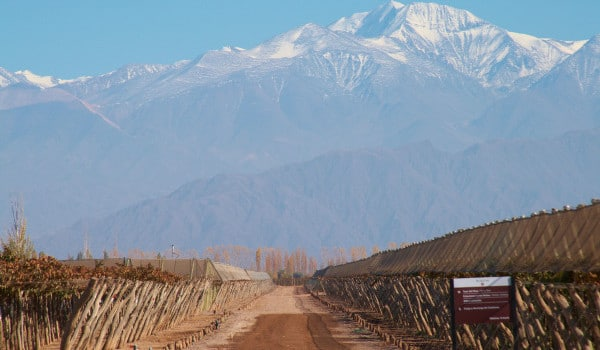 Argentina and Chile: Food and Wine on Tour