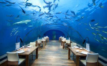 All-Glass Undersea Restaurant's New Menu