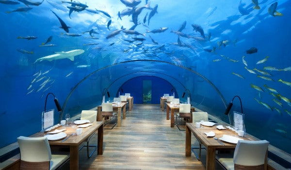 All-Glass Undersea Restaurant's New Menu