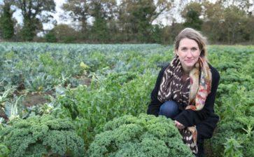 Kale Journeys Back to France