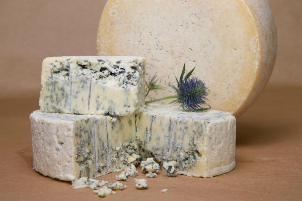 SouthAfricanCheeseFestival
