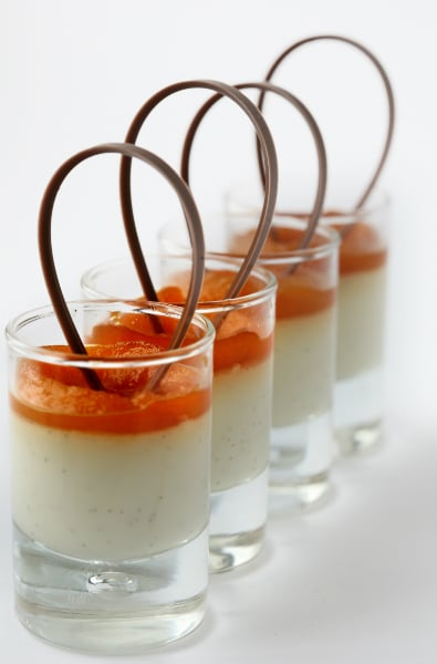 White chocolate panna cotta with apricots