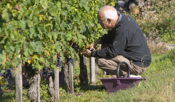BKWine Offers Two Exciting Wine Destinations This Autumn