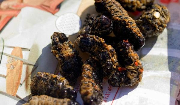 How to Eat: Caterpillars