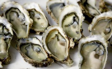 How to Eat: Oysters