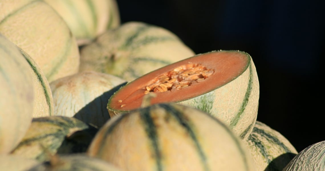 The appearance of the melon <em>Charentais</em> on the fresh markets is a sign of summer. (Photo Credit: melons, marché du jeudi (ORANGE,FR84) by Flickr user jeanlouis_zimmermann)