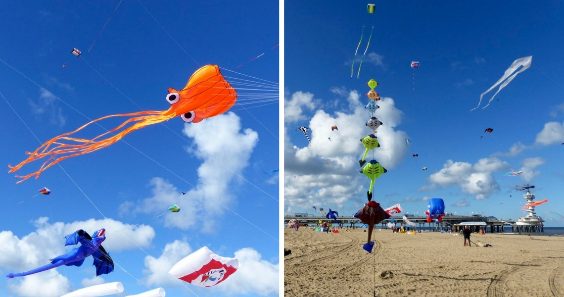 The kites come in every shape and color! (Photo credit: Christine Cognieux)