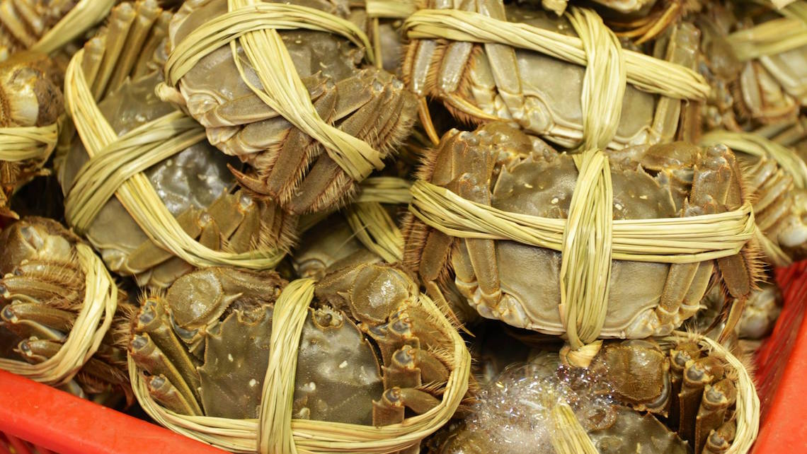 Tightly bound hairy crabs.