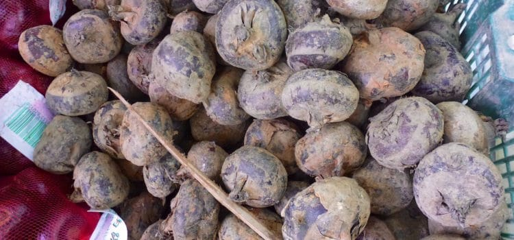 How to Eat: Fresh Water Chestnuts