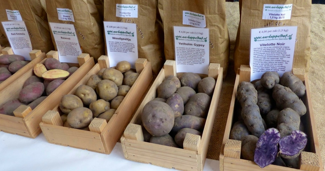 This assortment of potatoes varieties is so surprising. (Photo credit: Christine Cognieux)