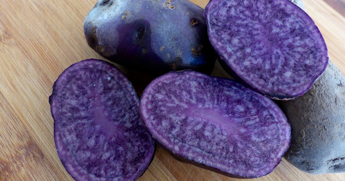 This deep blue potato is as beautiful as it is flavorful. (Photo credit: Christine Cognieux)