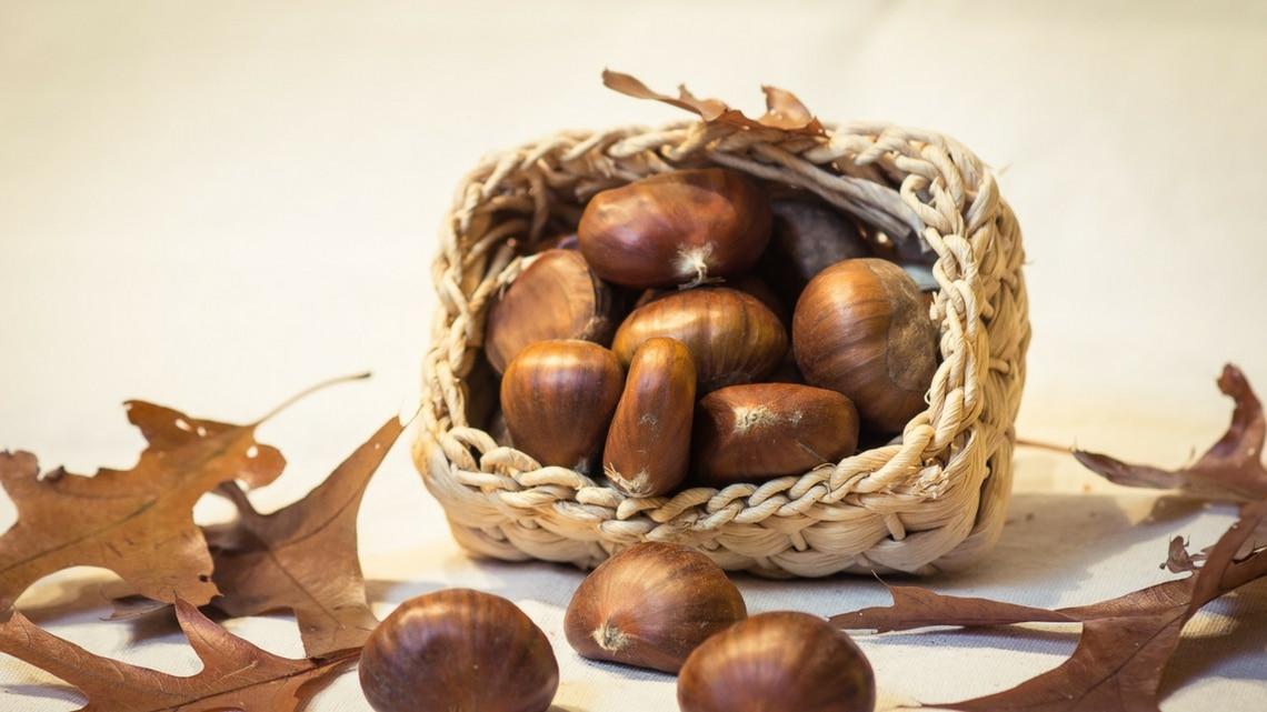 Fresh chestnuts (Photo Credit: kastanjes by André Scherpenberg)