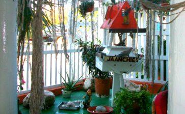 Restaurant: Jaanchie's Restaurant – Westpunt, Curaçao