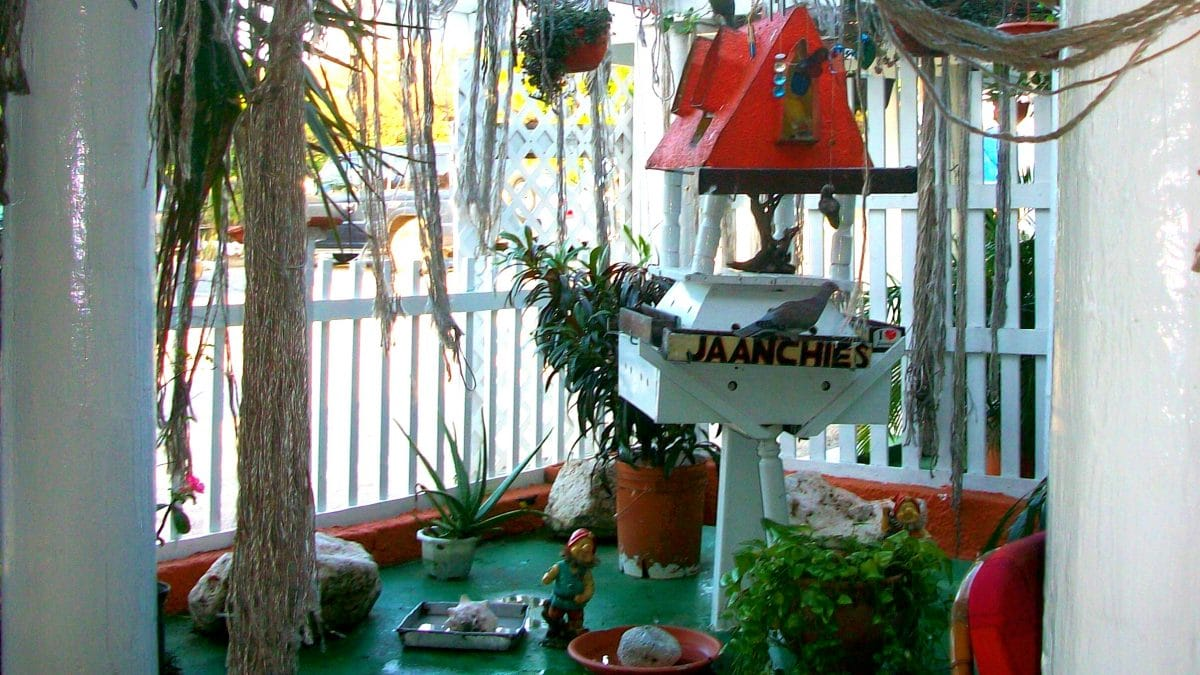 The cozy atmosphere at Jaanchie's Restaurant. (Photo Credit: Soraya Lemmens).